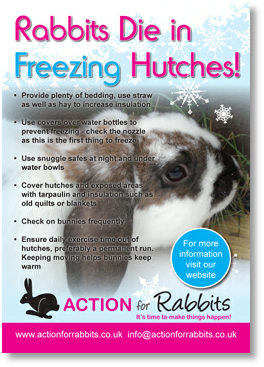 Rabbits die in freezing hutches.pdf