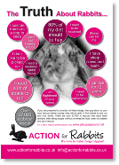 Truth about Rabbits v2.pdf